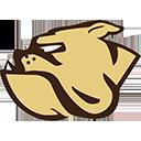North Bend Bulldogs